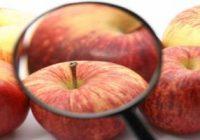 контроль якості продуктів харчування